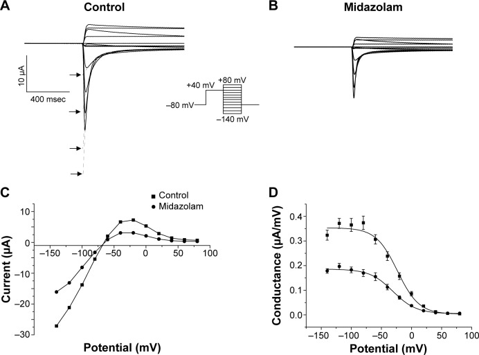 Effects of midazolam on channel inactivation. Notes: ( A ) In order to analyze the effects of midazolam on steady-state inactivation, a double-step voltage protocol was used (see inset). A typical family of current traces is displayed for control conditions ( A ) and after application of 200 μM midazolam ( B ). Current traces were corrected for channel deactivation by extrapolation to the beginning of the second voltage step (see dashed lines and arrows in A ). ( C ) Current-voltage relationship of tail current amplitude. Steady-state inactivation was obtained by dividing the current amplitude by the electrochemical driving force ( D ). Midazolam did not significantly affect the half-maximal inactivation voltage of hERG channels. Protocol: holding potential −80 mV, first test pulse to +40 mV (one second), second test pulse between −140 to +40 mV (20 mV increment, 500 msec). Abbreviation: hERG, human ether-à-go-go-related gene.