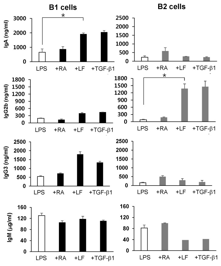 Effect of LF, RA, and TGF-β1 on Ig secretion by mouse peritoneal B1 and B2 cells. Mouse peritoneal B1 and B2 cells were stimulated with LPS (12.5 µg/ml), RA (25 nM), LF (60 µg/ml), and TGF-β1 (0.2 ng/ml) for 7 days. Supernatants were collected, and Ig production was determined by isotype-specific ELISA. Data represent the results of one of the two independent experiments and are means of triplicated samples±SEM. * p