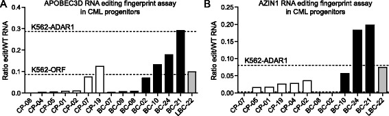 Detection of increased RNA editing activity by RESSq-PCR analysis of primary chronic phase versus blast crisis CML progenitors. RNA extracted from FACS-purified CD34 + CD38 + Lin - primary CML progenitors was analyzed by RESSq-PCR to validate the RNA editing fingerprint of leukemic progression. (A) RESSq-PCR analysis detecting increased RNA editing in APOBEC3D in purified BC CML LSC versus CP progenitors. (B) RESSq-PCR analysis detecting increased RNA editing in AZIN1 in purified BC CML LSC versus CP progenitors. Horizontal dashed lines represent comparative RNA editing activity in K562-ADAR1 and K562-ORF cells.