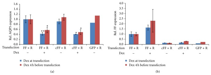 Effect of Dex on the AQP5 promoter. EpH4 cells were treated with Dex, 4 h prior ( n = 4) or during transfection ( n = 5) of the luciferase expression pGL3-basic vector including the AQP5 promoter (FF) and the pRL-TK transfection control plasmid (R). Negative controls included the pGL3-basic vector without promoter (cFF) ( n = 2) and the peGFP-N1 vector (GFP), ( n = 1). (a) Levels of AQP5 mRNA normalized to GAPDH are shown for the different transfected EpH4 cells with or without Dex treatment. Bars represent averages and confidence intervals; alpha = 0.05. Significance was tested between samples without Dex and with Dex treatment of the same transfection type. (b) Levels of Firefly enzyme activity normalized to Renilla enzyme activity measured with the luciferase reporter assay for the same transfected cells as in panel (a). Bars represent averages and confidence intervals; alpha = 0.05. Significance was tested between controls (−Dex) and treatments (+Dex), with one or two asterisks denoting P
