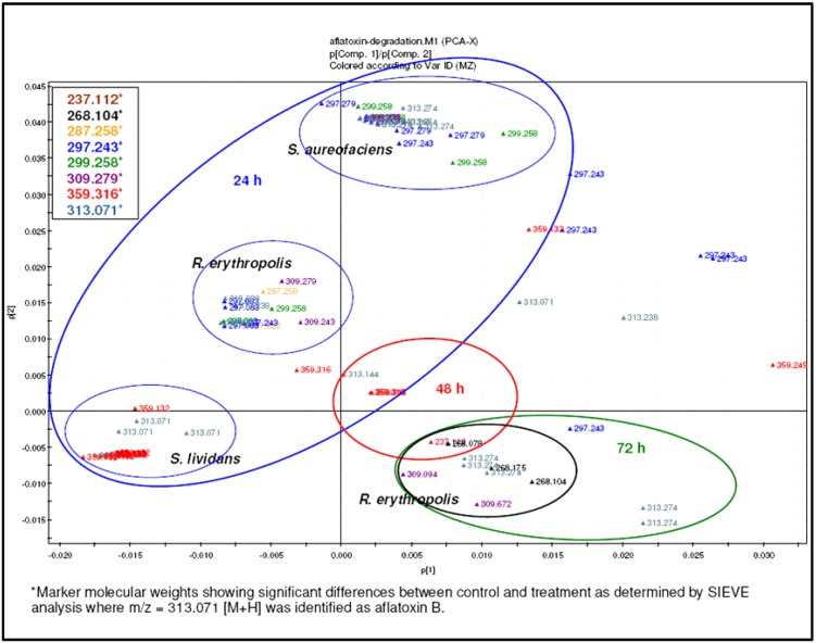 PCA analysis of AFB1 degradation by different Actinomycete strains showing the marker metabolites.