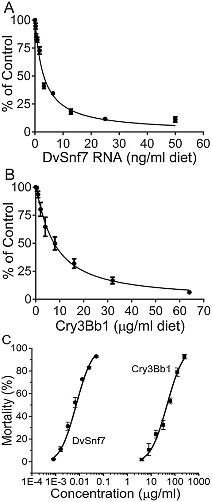 Concentration response curves for growth inhibition activity of DvSnf7 (A) and Cry3Bb1 (B) and for mortality of DvSnf7 and Cry3Bb1 (C) to SCR in 12-day diet incorporation bioassays. Data points represent mean values with standard errors of six replicated bioassays for growth inhibition curves (A and B) and of five replicated bioassays for mortality curves (C). The concentration-mortality response curves were plotted with log transformation of concentrations (X-abscissa) plotted against the percent mortality (Y-abscissa).