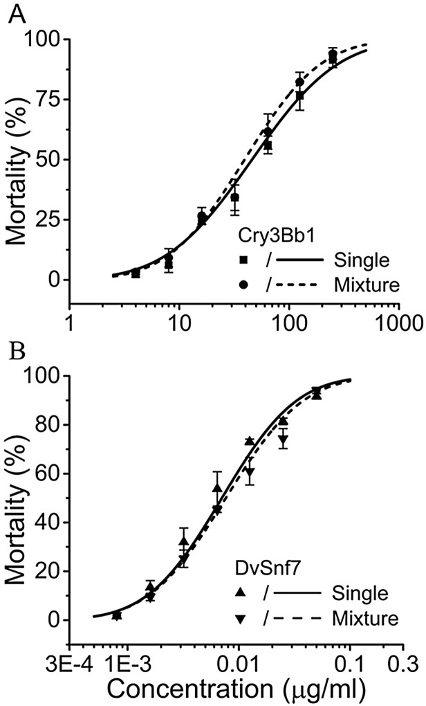 Observed concentration-mortality responses of Cry3Bb1 and DvSnf7 to the SCR. (A) Cry3Bb1 when applied alone (■) as compared to its mixture with a fixed sub-lethal concentration of DvSnf7 (●) and (B) DvSnf7 when applied alone (▲) as compared to its mixture with a fixed sub-lethal concentration of Cry3Bb1 (▲). The responses were plotted based on the tested Cry3Bb1 (A) or DvSnf7 concentrations (B), rather than the mixture concentrations. Data points represent mean mortality with standard errors of three replicated bioassays. LC 50 values and associated 95% confidence intervals are listed in Table 1 .