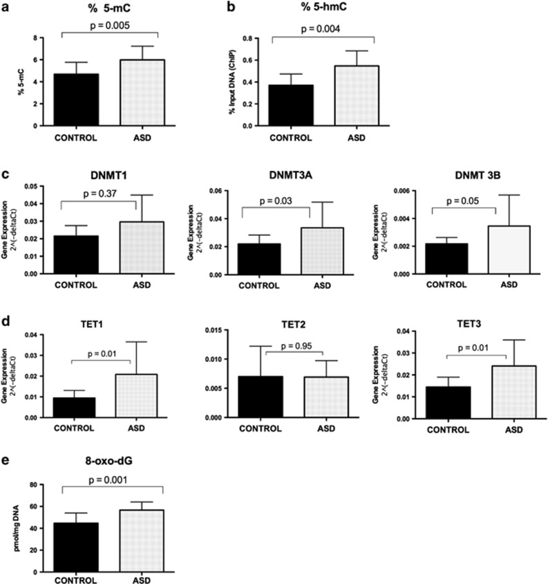 Global alterations in cerebellar levels of 5-mC ( a ), 5-hmC ( b ), DNA methyltransferases DNMT1, DNMT3A and DNMT3B ( c ), TET1, TET2, TET3 ( d ) and 8-oxo-dG ( e ) in 13 autism (ASD) and 13 matched control cerebellar samples. Results are expressed as the mean and s.d.'s with associated P -values.