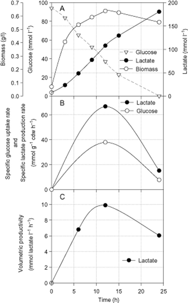 Time-course profile of growth, glucose consumption and lactate production by E . <t>faecalis</t> CBRD01 under anaerobic batch fermentation.A. Glucose consumption, biomass and lactate production.B. Specific rates of glucose uptake and lactate production.C. Volumetric productivity of lactate.