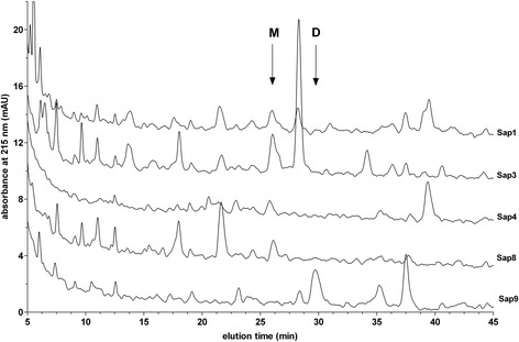 <t>HPLC</t> profiles of the fragmentation of LK by selected Saps. LK samples (1.5 μM) were digested with 0.03 μM of Sap1, −3, −4, −8, and −9 in the citrate buffer (pH 5.0) at 37°C for 24 hours. The reaction was stopped using pepstatin A (10 μM), followed by acidification with HCl (0.33 M). The samples were analyzed using HPLC on the Luna C18(2) 5 μm 4.6 × 250 mm column (Phenomenex) in a TFA <t>water-ACN</t> binary gradient system, as described in the Materials and Methods section. Arrows indicate the retention times of the Met-Lys-bradykinin (M) and des-Arg 1 -bradykinin (D) standards.
