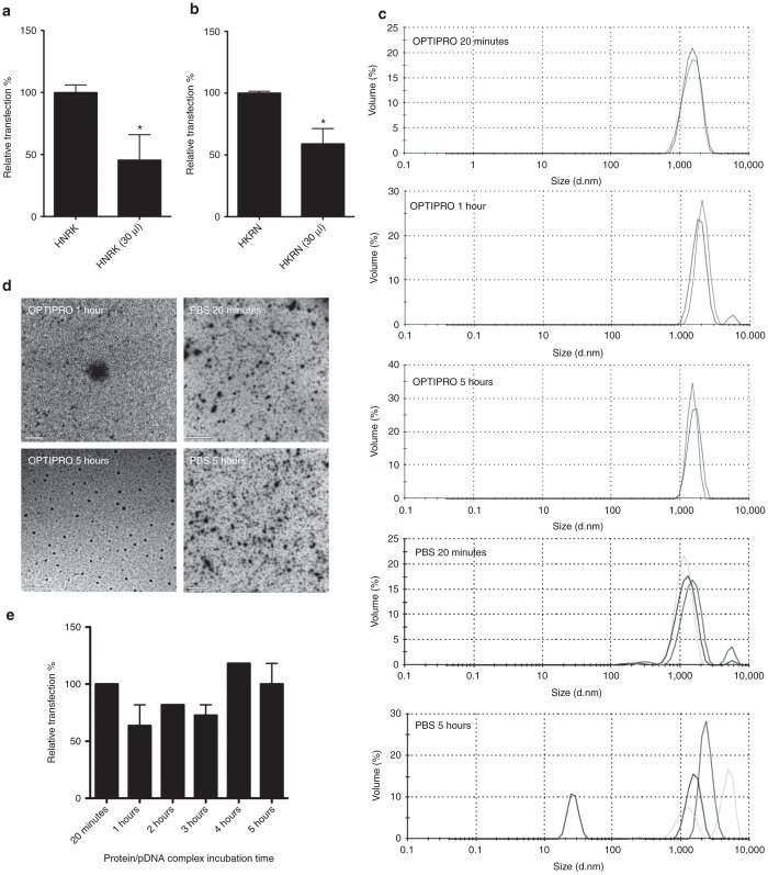 Effect of incubation volume and medium on the protein nanovector complex size and transfection efficiency. HNRK and HKRN modular protein nanovectors were allowed to self-assembly during a 20-minute incubation of HNRK and HKRN proteins with plasmid DNA in either 200 μl OPTIPRO medium or 30 μl PBS. Assembled nanovectors were then used to transfect HEK293T cells and transfection efficiencies were quantified 1 day later by flow cytometry ( a, b ). HNRK nanovector stability was analyzed after self-assembly in 200 μl OPTIPRO medium or 30 μl phosphate-buffered saline, and for 20 minutes to 5 hours incubation periods. The products formed were analyzed by dynamic light scattering ( c ) or transmission electron microscopy ( d ) as indicated. Transfection efficiency of HNRK nanovector after self-assembling in 200 μl OPTIPRO medium for 20 minutes to 5 hours was analyzed by flow cytometry 1 day after transfection (100% represents transfection efficiency for nanovectors formed in the 20 minutes incubation time). * P