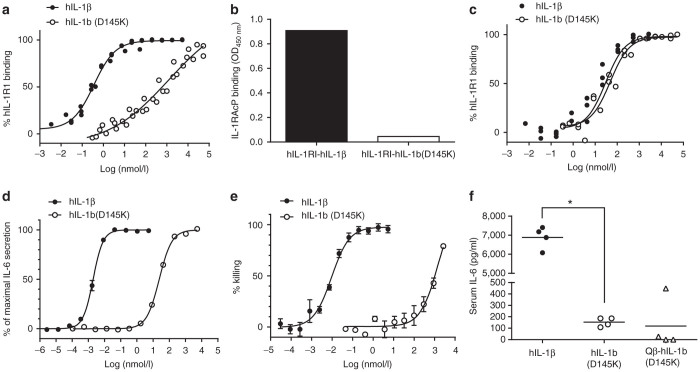 Characterization of the detoxified vaccine antigen hIL-1b(D145K). ( a ) hIL-1RI binding. Serial dilutions of wild-type hIL-1β or hIL-1b(D145K) were mixed with a constant amount of 1 nmol/l biotinylated hIL-1β and applied to ELISA plates that had been coated with hIL-1RI. Obtained OD values were reciprocally transformed to express % receptor binding of wild-type hIL-1β or hIL-1b(D145K), respectively. ( b ) Formation of the ternary hIL-1RI-hIL-1β-hIL-1RAcP signaling complex. Wild-type human IL-1β (0.4 µg/ml) or hIL-1b(D145K) (100 µg/ml) were incubated with hIL-1RAcP (1 µg/ml) and applied to ELISA plates that had been coated with 1 µg/ml of human IL-1RI. Formation of the ternary complex was detected with a hIL-1RAcP-specific antibody. ( c ) hIL-1RII binding. Experimental conditions were as in a but with hIL-1RII coated on the ELISA plate. ( d ) IL-6 secretion. HeLa cells were incubated with serial dilutions of wild-type hIL-1β or hIL-1b (D145K). After an incubation of 4 hours, IL-6 was quantified in supernatants by Sandwich ELISA. ( e ) Cytopathic effect. A375 cells were incubated with serial dilutions of either wild-type hIL-1β or hIL-1b(D145K). After 7 days, viable adherent cells were stained with crystal violet and quantified by measuring optical densities at 600 nm. Shown are mean values from triplicate measurements ± SEM. ( f ) In vivo inflammatory activity. Groups of female C57BL/6 mice ( n = 4) were injected i.p. with 1 µg of either wild-type hIL-1β or hIL-1b(D145K) or s.c. with 25 µg of the conjugate vaccine Qβ-hIL-1b(D145K). Three hours after injection, sera were collected, and IL-6 levels were quantified with a Quantikine ELISA kit (* P