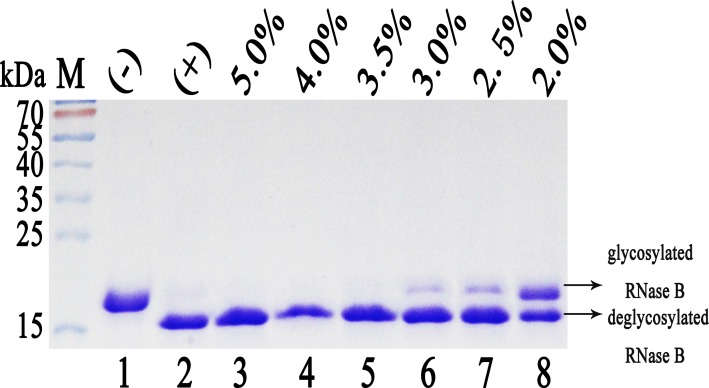 Determining the enzyme activity of Endo H-P through mobility shift assay of RNase B. M protein molecular weight markers (the size of each band was indicated on the left); Lane 1 denatured <t>RNase</t> B (negative control); Lane 2 denatured RNase B treated with 1 U of commercial Endo H from NEB, USA (positive control); Lane 3–8 denatured RNase B treated with 1μl of Endo H-P diluted into 5.0%, 4.0%, 3.5%, 3.0%, 2.5% and 2.0%, respectively.