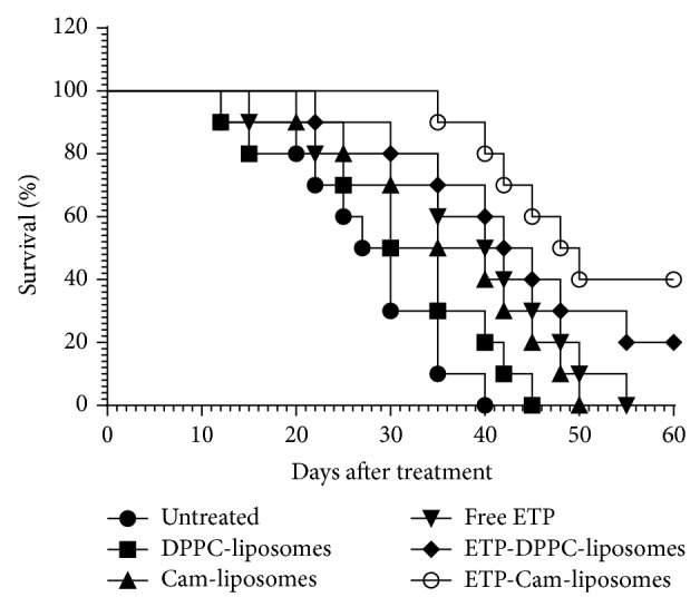 Effects of various formulations of ETP chemotherapy on the survival of tumor-bearing mice. The fibrosarcoma was induced by exposure to benzo(a)pyrene. The treatment of tumor-bearing animals was started at the time point when tumor size reached a volume of approximately 200 mm 3 . Various formulations of etoposide at the dose of 5 mg/kg were administered intraperitoneally to treat tumor-bearing mice twice weekly for three weeks. The first day of treatment was considered day zero. Free ETP versus untreated control ( P = 0.0077); ETP-DPPC-liposomes versus free ETP ( P = 0.2838); and ETP-Cam-liposomes versus free ETP ( P = 0.0303).
