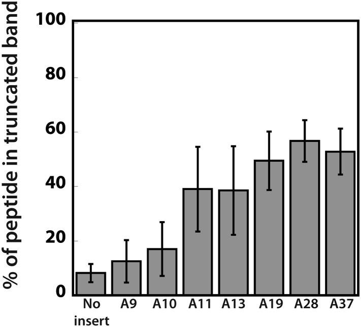 Quantification of the efficiency of ribosome sliding on mCherry reporters expressed in the <t>PURExpress</t> system. mCherry reporters ( Figure 1A : no insert, and various A stretches) were expressed in the PURExpress cell-free translation system ( Figure 5 ). The plot reports the percent of truncated peptide product expressed relative to total peptide product for each reporter (100% × (radioactivity in truncated band)/(radioactivity in truncated + full-length bands)). DOI: http://dx.doi.org/10.7554/eLife.05534.016