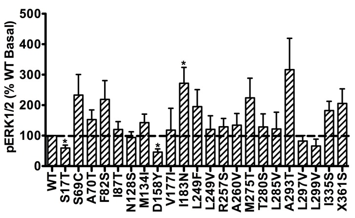 Basal pERK1/2 signaling of mutant hMC3Rs. Results are expressed as percentage of WT basal pERK1/2 level. Shown are mean ± SEM of at least four experiments. Star (*) indicates significantly different from WT hMC3R, P