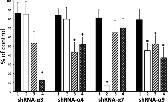Roles of individual cm-nAChR subtypes in implementing synergy of nicotine with GFs. The SW900 cells transfected with either shRNA-NC (control; taken as 100%) or anti-nAChR shRNA were incubated for 24 h in the absence (1) or presence of combinations of 0.1 μM nicotine with 10 ng/ml of EGF (2) , IGF-I (3) or VEGF (4) , and then subjected to direct counting (TBD-negative cells only). Data are mean + SD from a triplicate sample. Asterisk = p