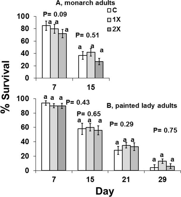 Survival of two species of adult butterflies that were free-ranging and allowed to feed on flowers from Mexican milkweed, Asclepias curassavica , that were untreated (C), treated with label rate (1X), or twice label rate (2X) of soil-applied imidacloprid (Marathon 1%G) for Danaus , monarch butterflies at days 7 and 15 and for Vanessa , painted lady butterflies at days 7, 15, 21, and 29.