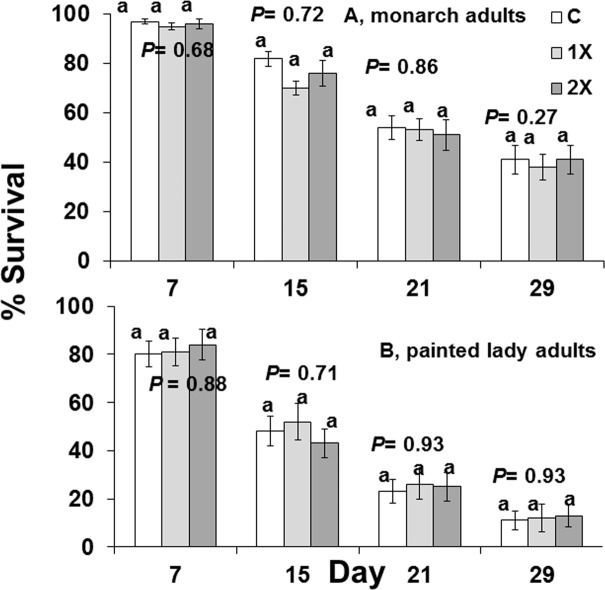 Survival at days 7, 15, 21, 29 of two species of adult butterflied that were force-fed 30% syrup containing 0 ppb (C), 15 ppb (1X), or 30 ppb (2X) imidacloprid.