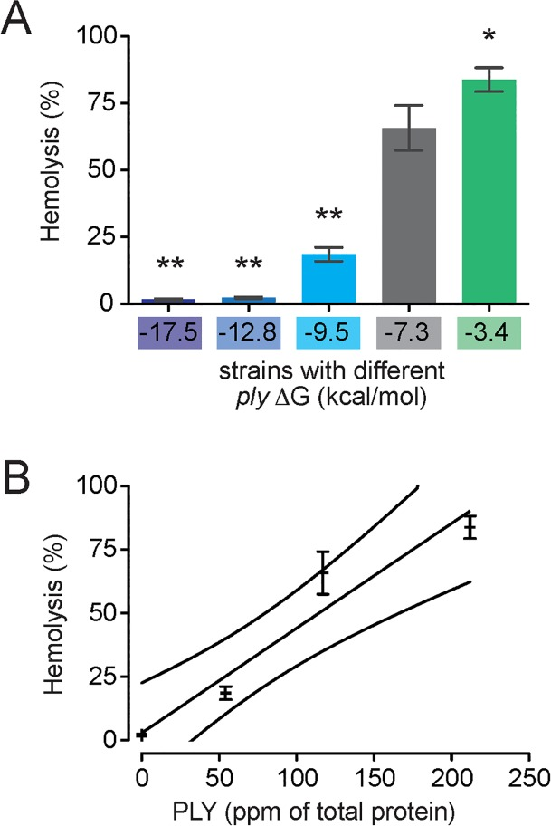 Differential PLY production by S . pneumoniae strains is directly related to PLY production. Lysis of primary human erythrocytes as assessed by hemoglobin release assay correlates with (A) ply 5' mRNA ΔG and (B) PLY as measured by ELISA (R 2 = 0.95; outside lines represent 95% CI). *, P