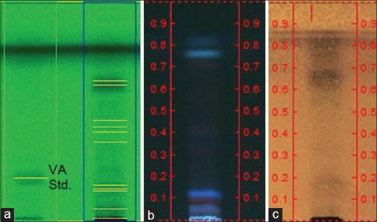 High-performance thin layer chromatography <t>(HPTLC)</t> images of the fingerprint of Valerianae Radix et Rhizoma water extract (VRe). VRe was loaded and developed in HPTLC plate, then detected with an ultraviolet or ((a) 254 nm; (b) 366 nm; (c) white light after p-anisaldehyde sprayed) valerenic acid standard. Images were obtained with <t>Camag</t> Visualizer (Camag, Swiss)