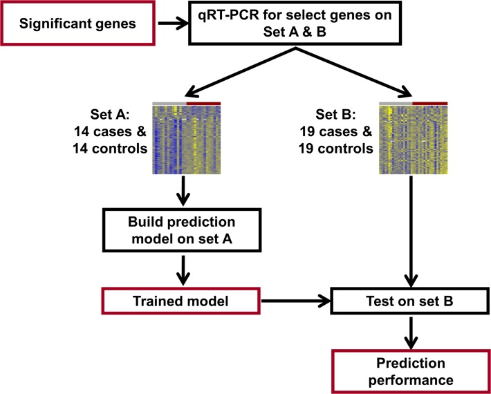 qRT-PCR study flow diagram. Differentially expressed genes identified from the microarray study were profiled using qRT-PCR for validation and construction of a multi-gene disease classifier using an extended set of 33 cases and 33 controls. Set A was used to build the prediction model and then this model was tested on set B, consisting of 19 cases and 19 controls.