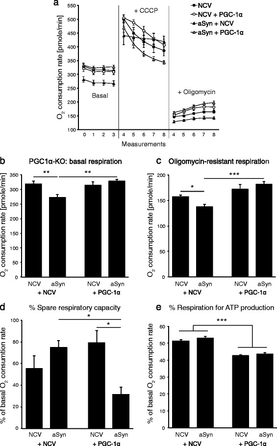 Alpha-synuclein impairs basal mitochondrial respiration in PGC1α-KO neurons. Primary neuronal cultures were derived from the cerebral cortex of PGC1α-KO mice and co-transduced with either a non-coding AAV vector (NCV), an AAV vector encoding human aSyn, or with an AAV vector encoding PGC-1α (PGC1α). (a,b) Basal oxygen consumption was measured from individual cultures in the conditions NCV alone (n = 15), NCV + aSyn (n = 20), NCV + PGC1α (n = 19) and aSyn + PGC1α (n = 15). (a,d) Some of the individual cultures were treated with CCCP, in order to determine the percentage of spare respiratory capacity (d) : NCV alone (n = 6), NCV + aSyn (n = 10), NCV + PGC1α (n = 4) and aSyn + PGC1α (n = 5). Other individual cultures were treated with oligomycin to determine (c) the oligomycin-resistant residual respiration and (e) the percentage of oxygen consumption used for ATP production: NCV alone (n = 9), NCV + aSyn (n = 10), NCV + PGC1α (n = 10) and aSyn + PGC1α (n = 10). Statistical analysis: two-way ANOVA with Newman-Keuls post-hoc test. (b-d): significant interaction between the aSyn and PGC1α effects, *p