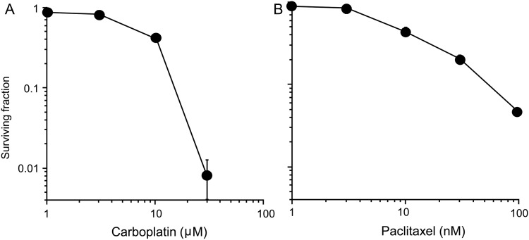 Cytotoxicity of carboplatin and paclitaxel in H460 cells assessed by clonogenic survival assay. ( A ) Carboplatin. ( B ) Paclitaxel. The mean ± SD is shown.