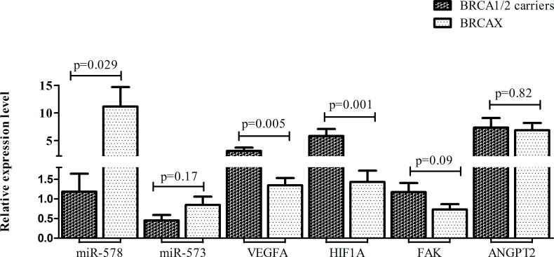 Mean expression levels with S.E.M. of both miR-578, miR-573 and their target genes VEGFA, HIF1A, FAK and ANGPT2 in BRCA1/2 carriers and BRCAX associated tumors.