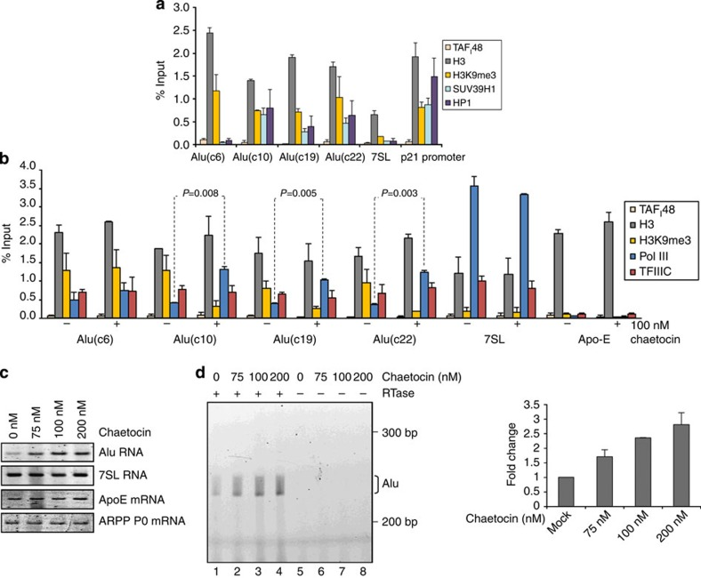 SUV39H1 inhibits pol III loading and expression of some SINEs. ( a ) Mean±s.e.m. of the percentage input bound in two independent ChIP–quantitative PCR (qPCR) assays with HeLa cells, showing occupancy of H3, TAF I 48, H3K9me3, SUV39H1 and HP1 at Alu loci, 7SL and p21 (positive control) genes. ( b ) Mean±s.e.m. of the percentage input bound in two independent ChIP–qPCR assays with HeLa cells treated for 24 h with vehicle (−) or 100 nM chaetocin (+), showing occupancy of H3, TAF I 48, H3K9me3, pol III and TFIIIC at Alu loci, 7SL and Apo-E genes. ( c ) Semiquantitative RT–PCR analysis of expression levels of indicated transcripts in HeLa cells treated for 24 h with indicated concentrations of chaetocin. ( d ) Analysis by primer extension of expression levels of Alu transcripts initiated from pol III start site in HeLa cells treated for 24 h with indicated concentrations of chaetocin. Reverse transcriptase was omitted from reactions in lanes 5–8. Right panel shows mean±s.d. of fold change in Alu expression in two independent experiments quantified using ImageJ. All P values are calculated by t -test.