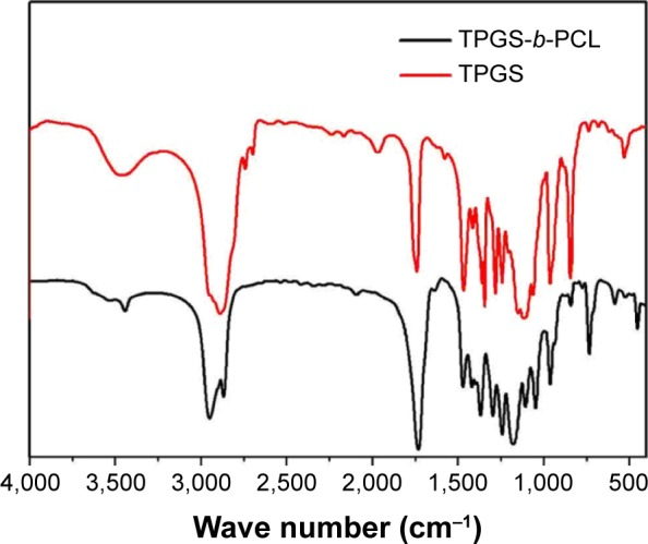 FTIR spectra of TPGS and TPGS- b -PCL copolymer. Abbreviations: FTIR, Fourier transform infrared; PCL, poly(ε-caprolactone); TPGS, d -α-tocopheryl polyethylene glycol 1000 succinate.