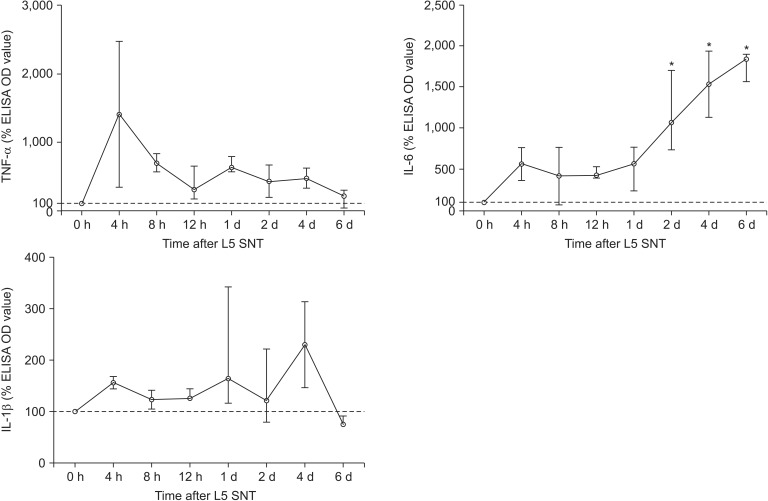 Percentage levels of TNF-α, IL-6 and IL-1β in the rats undergoing L5 spinal nerve transection (SNT) after the administration of the control small interfering RNA (siRNA) (CON group). Data are expressed as the median (range). Each cytokine OD level is normalized to the median OD value at 0 h. The L5 spinal nerve cord samples are harvested on 0, 4, 8, 12 h and 1, 2, 4 and 6 d after L5 SNT to detect these cytokine levels by standard enzyme-linked immunosorbent assay (ELISA). The median OD levels of TNF-α, IL-6 and IL-1β in the spinal cord at 7 d after intrathecal catheter implantation without administration of siRNA or a SNT operation are used as t o values. * P