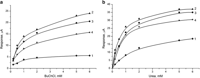 Calibration curves of biosensors. They were based on immobilized BuChE (a) and urease (b) , without zeolite (1) and with different heat-treated zeolite Beta: BEA-1 (1), BEA-2 (2), and BEA-3 (3). Measurements were conducted in 5 mM phosphate buffer, pH 7.4. The data shown represent the averaged response of five to seven different sensors.