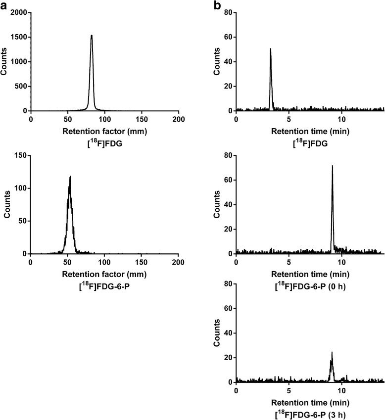 Determination of the purity of [ 18 F]FDG-6-P. By (a) iTLC at 0 h and (b) RP-HPLC after incubation of the radiopharmaceutical in water for 3 h. The retention profiles of [ 18 F]FDG-6-P were easily resolved from that of [ 18 F]FDG, the most likely breakdown product of [ 18 F]FDG-6-P. No changes in the [ 18 F]FDG-6-P peak or retention time were observed.
