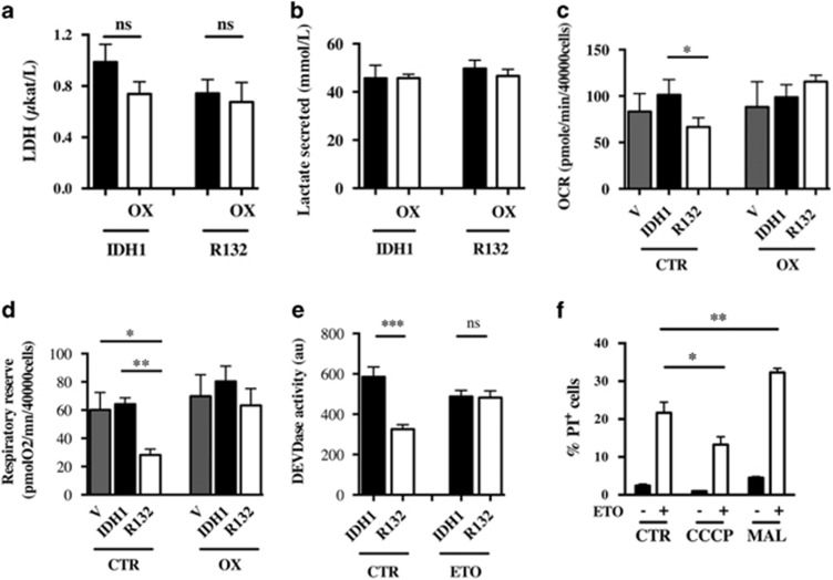 Lactate deshydrogenase activity ( a ) and lactate production ( b ) of U251 cells expressing IDH1 isoforms. Cells were treated or not with 3 mM oxamate (OX) for 48 h. ( c ) Basal oxygen consumption was determined by measuring OCR as in Figure 4c in cells expressing IDH1 isoforms treated or not with 3 mM oxamate for 7 days. ( d ) Mitochondrial respiratory reserve was determined as in Figure 4e in cells treated or not with 3 mM oxamate for 7 days. ( e ) Caspase 3 activation was determined using a DEVDase activity assay 24 h after ETO-induced apoptosis in U251 cells treated or not for 7 days with 3 mM oxamate. ( f ) The number of dead cells was measured 24 h after a concomitant treatment with CCCP (1 μ M) or malate (3 mM) and ETO (50 μ g/ml). The number of dead cells was determined by FACS after propidium iodide (1 μ g/ml) staining. Results are expressed as the mean±S.E.M. of three experiments performed in triplicate
