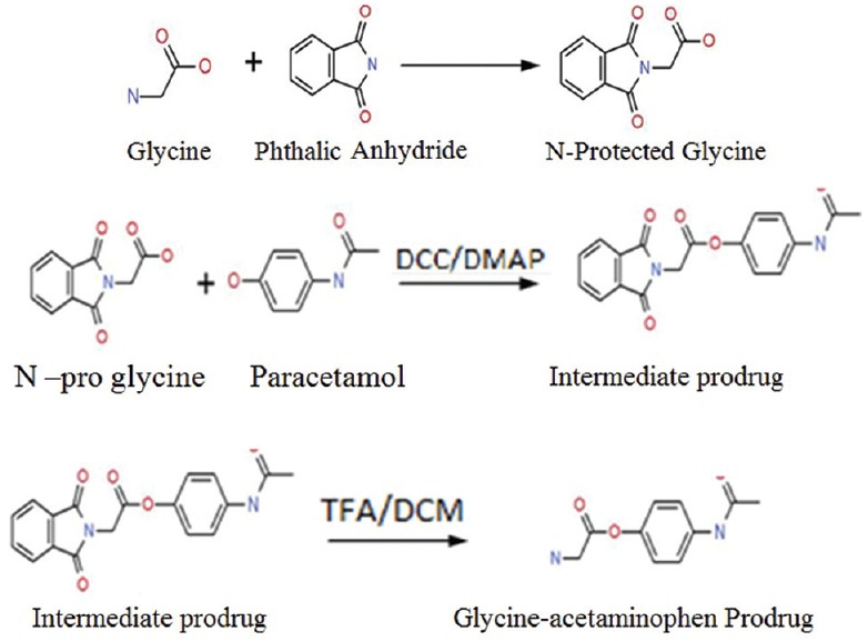 Synthesis of prodrug, a three step process including amino group protection of amino acid using phthaloylation; reaction of acetaminophen with N-protected amino acid and finally the deprotection (DCC=N,N-dicyclohexylcarbodiimide, DMAP=4-dimethylaminopyridine, <t>TFA=Trifluoroacetic</t> acid, DCM=Dichloromethane)