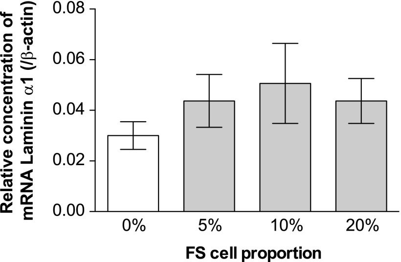 Relative mRNA concentration of laminin α1 chain ( Lama1 ), evaluated by quantitative real-time PCR. The white and gray bars represent cell aggregates without FS cells (0%) and with FS cells (5%, 10%, and 20%), respectively (n=4–5, mean±SEM). The concentrations were normalized with β-actin mRNA concentration. The expression level of Lama1 mRNA did not significantly differ in relation to the presence or absence of FS cells.