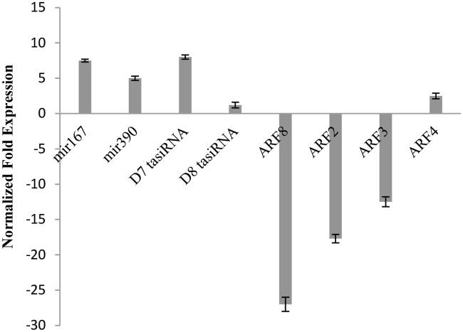 QRT-PCR validation of miRNAs, tasiRNAs, and ARF s in 5-azaC-treated 7B-1 seedlings. Expression changes are presented as normalized fold changes between the test tissues and reference tissue (untreated 7B-1 ). Positive and negative values indicate up and down regulations of the gene expression, respectively. Twofold threshold was considered as a cutoff value for significant changes in the expression. Error bars represent standard errors of three technical replicates based on DMNRT (p = 0.05).