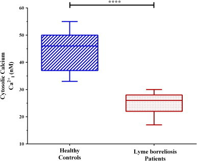 Cytosolic ionized calcium levels of PBMCs. Dashed blue lines (left) represent healthy controls ( x̄ =46 nM), where red dots (right) represent Lyme borreliosis patients ( x̄ =26 nM). Significant difference between groups was measured by Student's t -test (**** p