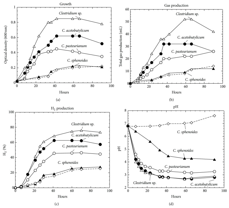 Growth, total gas production, hydrogen production, and pH change in Clostridia . Note that all four strains including Clostridium sp., C. acetobutylicum , C. <t>pasteurianum,</t> and C. sphenoides were grown in MSM medium, while C. sphenoides was also in SCM medium (marked with dashed line).