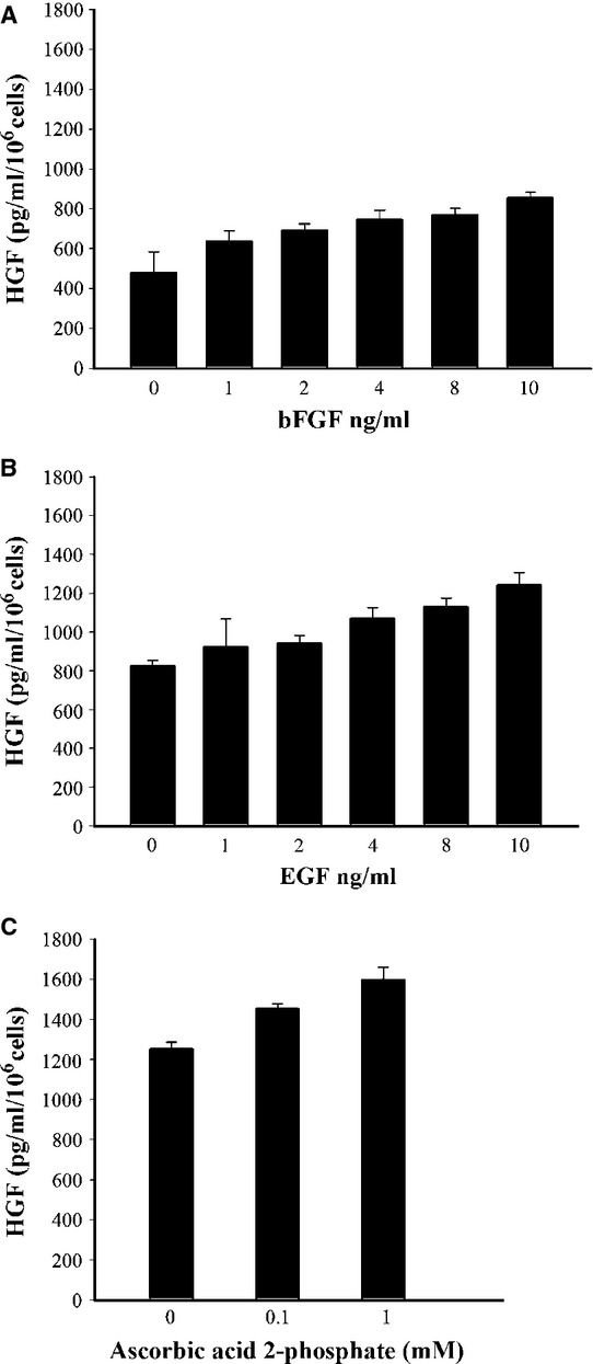 Effect of bFGF, EGF and ascorbic acid 2-phosphate on HGF secretion by MSCs. ( A ) MSCs were incubated without or with the indicated concentrations of bFGF, ( B ) presence of 10 ng/ml bFGF with indicated concentration of EGF ( C ) and medium supplemented with 10 ng/ml bFGF, 10 ng/ml EGF in the absence or presence of ascorbic acid 2-phosphate for 72 hrs. HGF in the conditioned medium was determined by an ELISA. The values represent the mean ± S.D. MSCs secreted significantly increased HGF in medium supplemented with bFGF, EGF and ascorbic acid 2-phosphate ( P