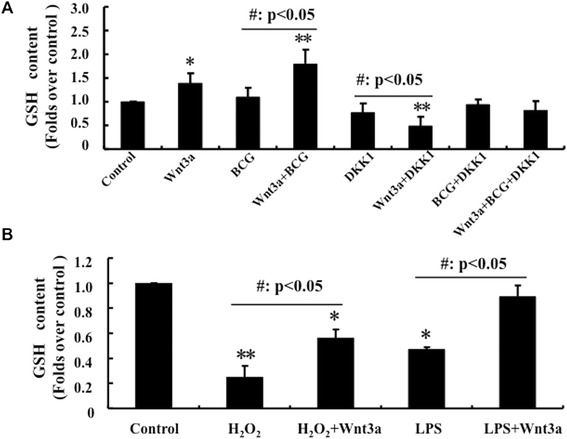 Activation of Wnt/β-catenin signaling increases GSH concentration in RAW264.7 cells. RAW264.7 cells were treated with BCG, Wnt3a, DKK1, H 2 O 2 or their combination as indicated, they were then used for determination of intracellular GSH levels by an ELISA for GSH. (A) Impact of Wnt/β-catenin signaling on GSH production of RAW264.7 cells infected with BCG at MOI of 10 for 6 h. An activation of Wnt signaling by addition of Wnt3a-CM could induce GSH generation; in contrast, overexpression of Wnt inhibitor DKK1 reduced GSH levels. (B) Impact of Wnt/β-catenin signaling on GSH production of RAW264.7 cells exposed to oxidative stress H 2 O 2 (500 μmol/L) or LPS (100 ng/mL) stimulation for 6 h. The Wnt signaling could increase intracellular reduced GSH concentration in cells stressed by H 2 O 2 and LPS. Compared to a control-CM treated cells, *: p