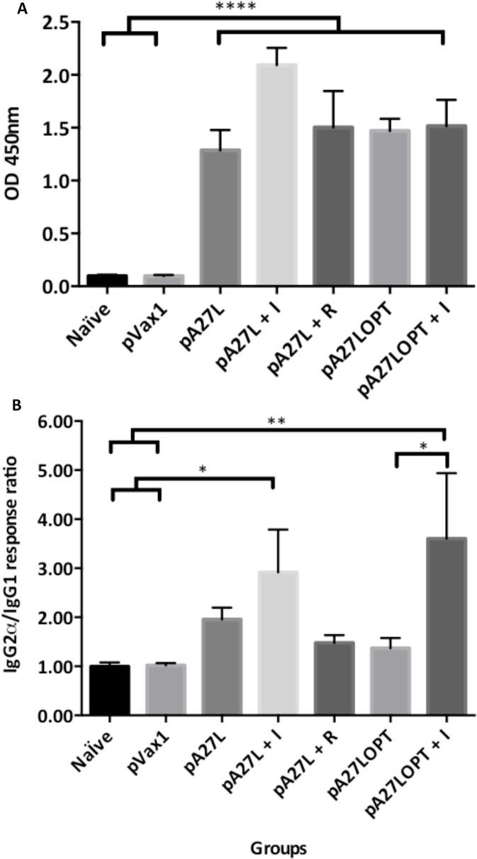 Humoral-mediated immune response against recombinant VVWR A27L by ELISA. A. Total IgG response after DNA immunization of four mice three times, two weeks apart with A27L, A27L+I, pA27L+R, pA27LOPT, pA27LOPT+I. Naïve and pVax1 were used as controls, One week after the last immunization, sera from each group of mice were diluted at 1:400, and incubated in a 96-well plate previously coated with recombinant VVWR A27 protein. B. Antigen-specific production of each IgG subtype shown was detected from each group. The plate was analyzed by scanning the absorption at 450 nm and the immune responses among groups of mice are presented as the mean ± standard error of the mean (SEM) of at least three independent experiment. A p value of less than 0.05 was considered significant.
