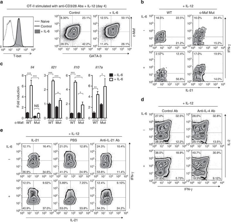 IL-6-induced <t>IL-4/IL-21</t> production is responsible for the defect of Th1 differentiation. Young naive CD4 + T cells were stimulated with anti-CD3 and anti-CD28 Abs plus exogenous IL-12 in vitro . ( a ) Four days after stimulation, expressions of the indicated transcription factors were analysed. ( b , c ) Naive polyclonal CD4 + T cells from homozygous c-Maf-mutant mice (c-Maf Mut) or littermate control mice (WT) were stimulated in the presence or absence of IL-6. Five days after stimulation, effector cells were re-stimulated with phorbol-12-myristate-13-acetate/ionomycin. Representative plots of cytokine-producing cells are shown ( b ). Indicated cytokine mRNA expression at day 3 was also assessed by real-time quantitative PCR ( c ). Results are shown as mean±s.e.m. with n =4–6 per group; * P