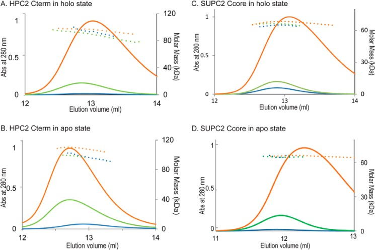 SEC-MALS results of HPC2 Cterm and SUPC2 Ccore in Ca 2+ -bound holo and Ca 2+ -free apo states. A , three different amounts of HPC2 Cterm protein were analyzed by Superdex 200 SEC-UV/LS/RI in Ca 2+ -saturating buffer (20 m m CaCl 2 ). The UV curves indicate the elution peaks of the protein samples analyzed, and the dotted lines indicate the calculated molar mass across the elution peaks. Orange , 1.16-mg injection; green , 155-μg injection; blue , 31.0-μg injection. B , three different amounts of HPC 2Cterm protein were analyzed by Superdex 200 SEC-UV/LS/RI in Ca 2+ -free buffer (no added CaCl 2 , 1 m m EDTA). Orange , 2.36-mg injection; green , 650-μg injection; blue , 260-μg injection. C , three different amounts of SUPC2 Ccore protein were analyzed by Superdex 200 SEC-UV/LS/RI in Ca 2+ -saturating buffer (20 m m CaCl 2 ). The UV curves indicate the elution peaks of the protein samples analyzed, and the dotted lines indicate the calculated molar mass across the elution peaks. Orange , 1.35-mg injection; green , 150-μg injection; blue , 15.0-μg injection. D , three different amounts of SUPC2 Ccore protein were analyzed by Superdex 200 SEC-UV/LS/RI in Ca 2+ -free buffer (no added CaCl 2 , 1 m m EDTA). Orange , 1.35-mg injection; green , 150-μg injection; blue , 75.2 μg injection.