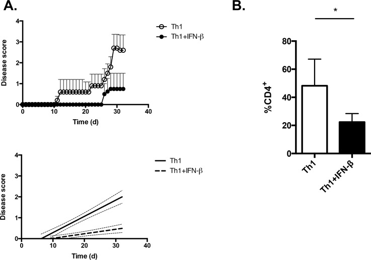 IFN-β suppresses the encephalitogenic potential of Th1 cells. CD4 + CD62L hi T cells were isolated from female 2D2 mouse spleens and lymph nodes, and were stimulated with plate-bound anti-CD3+anti-CD28 under Th1 conditions, in the presence or absence of 100 U mL -1 of IFN-β, for 5 days. They were then transferred to female, 6-week old, Rag1-/- mice (5x10 6 cells/mouse). Recipient mice were monitored for clinical signs of EAE. n = 5 Th1, n = 4 Th1+IFN-β. Right graph, linear regression curves of the disease courses. The slopes are significantly different between the disease courses (p
