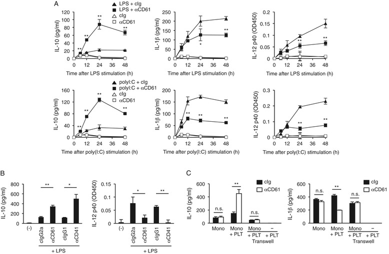 IgG-opsonized platelets augment IL-10 release but decrease proinflammatory cytokine release from monocytes via their direct contact. (A) A crude PBMC preparation was stimulated with LPS or poly(I:C) in the presence of anti-human CD61 mAb or isotype-matched control (cIg). The IL-10, IL-1β, and IL-12 p40 levels in the culture supernatants collected at different time points were determined by ELISA. (B) A crude PBMC preparation was stimulated with LPS in the presence of an anti-CD61 or anti-CD41 mAb or isotype control (cIg). The IL-10 and IL-12 levels in the culture supernatant after 24 h were determined by ELISA. Blank (−) indicates cells with no antibody or stimulator for monitoring spontaneous production of cytokines. (C) Transwell assaying of cytokine production. Sort-purified monocytes were stimulated with LPS in the presence or absence of platelets and an anti-CD61 mAb. The bottom chamber contained monocytes or was left blank, and the upper chamber contained platelets. Both chambers contained LPS and the anti-CD61 mAb. The IL-10 ( left ) and IL-1β ( right ) levels in the culture supernatant were measured after 24 h. * P