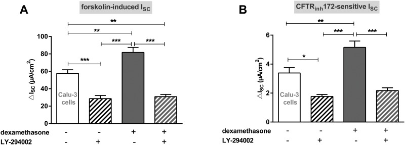 LY-294002 prevents the increase of CFTR activity induced by dexamethasone in Calu-3 cells. Graphs represent the mean + SEM of I SC in response to 100 nM dexamethasone and LY-294002 for 24 h measured in Ussing chambers. A: Forskolin-induced I SC (n = 12–18, ** p