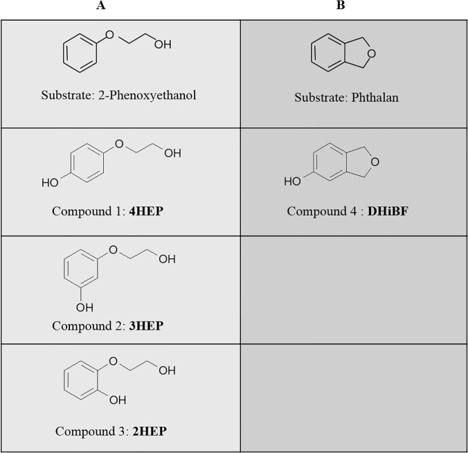 Hydroxylated products. Starting substrates and corresponding hydroxylated products obtained through ToMO-catalyzed biotransformation of ( A ) 2-phenoxyethanol and ( B ) phthalan.