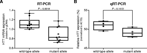 HTT mRNA quantification after RT-PCR amplification across the CAG repeat compared to SNP-specific quantitative RT-PCR. Whisker boxplots of wild-type versus mutant HTT mRNA expression levels in adult-onset HD post-mortem brain material. (A) Quantification after amplification across the CAG repeat, relative to gDNA. Pair wise differences were evaluated using linear mixed model, n = 10. (B) SNP rs362273-specific quantitative RT-PCR, normalized to β-actin (ACTB). Data were evaluated using a two-tailed student t -test, n = 4.