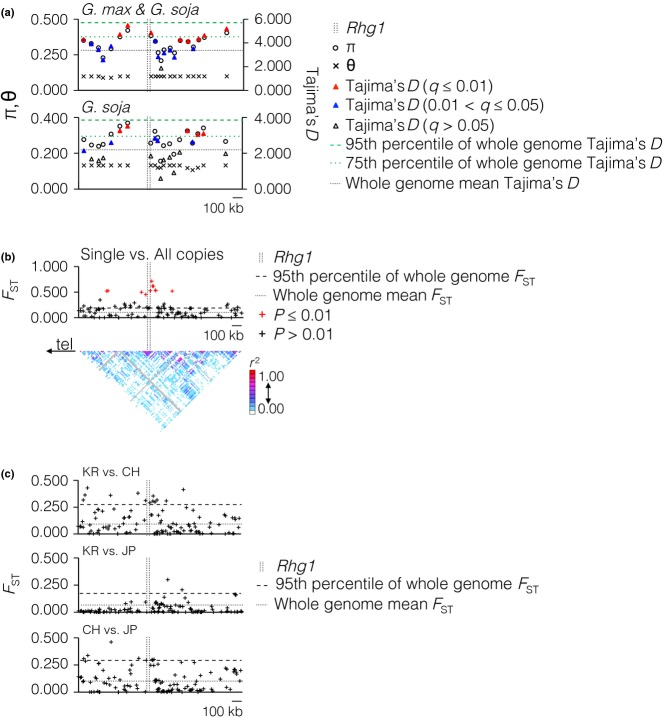 Signatures of selection at the Rhg1 locus. (a) Nucleotide diversity (π and θ), Tajima's D and linkage disequilibrium were measured in the 1.5-Mbp region across the locus in 19 548 accessions (18 383 Glycine max 1165 Glycine soja ). The mean and 75th and 95th percentiles of whole-genome Tajima's D are marked by horizontal lines in corresponding graphs. (b) F ST was calculated for lines with experimentally determined copy number (46 single copy vs. 48 multiple copy). Direction of telomere = 'tel'. The mean and 95th percentile of whole-genome F ST are marked by horizontal lines. Red marks indicates statistical significance. (c) F ST between geographic subpopulations. One hundred and thirty-five single nucleotide polymorphisms were used to compare: Top graph, between 3311 germplasm accessions from Korea and 3855 from China; centre, between 3311 from Korea and 2466 from Japan; bottom, between 3855 from China and 2466 from Japan. The mean and 95th percentile values of whole-genome F ST are marked by a horizontal line in the corresponding graphs.