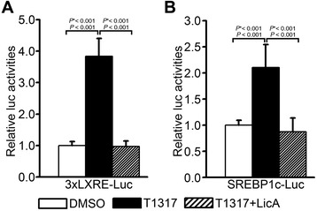 Effects of LicA on the T0901317-stimulated activation of LXRE-containing promoters. LXRα-mediated transcriptional activity was determined on (A) 3 × LXRE-luciferase or (B) SREBP-1c LXRE-luciferase reporters in the presence of 1 μM T0901317 and 10 μg/mL LicA in HepG2 cells. Luciferase activity was normalized to cotransfected β-galactosidase activity. Data were presented as means (SD) from four independent experiments with duplicate determinations. Statistical analysis was performed using one-way ANOVA. P * = P value for Bonferroni correction. DMSO, dimethyl sulfoxide; T1317, T0901317.