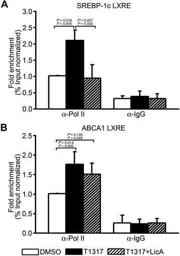 Effects of LicA on the recruitments of RNA polymerase II to the LXRE regions of SREBP-1c (A) and ABCA1 (B) genes. After treatment of primary hepatocytes with 1 μM T0901317 and 10 μg/mL LicA, ChIP assays were performed using anti-RNA polymerase II or IgG antibodies. Immunoprecipitated LXRE-containing DNA levels were determined by qRT-PCR and normalized to input DNA. Data were presented as means (SD) from four independent experiments with triplicate determinations. Statistical analysis was performed by one-way ANOVA. P * = P value for Bonferroni correction. DMSO, dimethyl sulfoxide; T1317, T0901317.