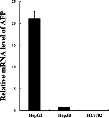 Relative expression level of AFP in three cell lines. AFP and β - actin mRNA levels of HCC cells HepG2, Hep3B and normal liver cell HL7702 were quantified by fluorescent real time quantitative PCR. β-Actin was used as the internal control to calculate the relative mRNA level of AFP.
